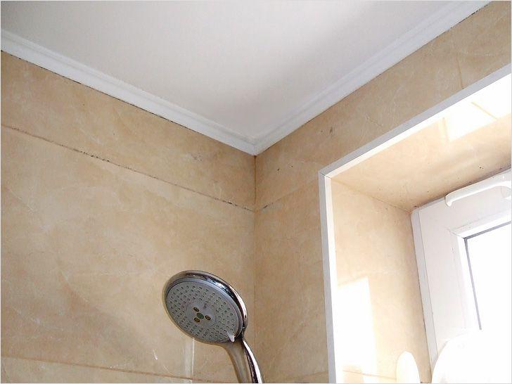 Чем покрасить потолок в ванной - выбор краски.